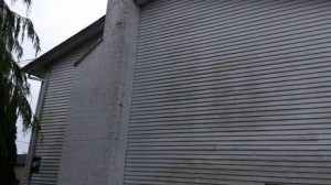 Siding Cleaning - Before